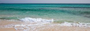 Fuerteventura: Praktische Tipps