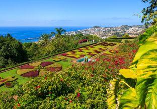 Botanischer Garten Madeira